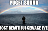 Seattle_Blog_Sewage_Puget